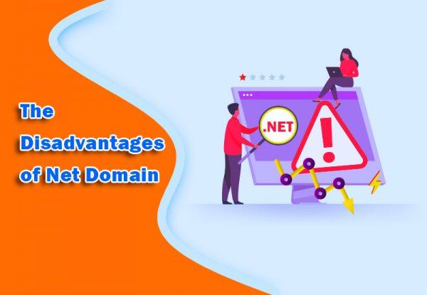 .Net Domain Extension