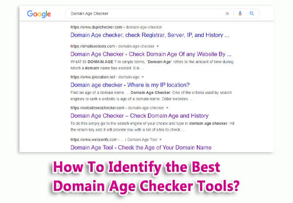 how to identify the best domain age checker tools