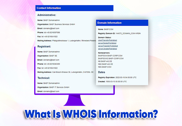 what is whois information (data)